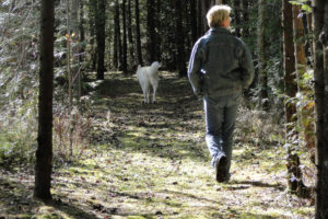 Walking your dog at Robert Johnston Eco Forest